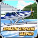 Amazon Airplane Landing Gold